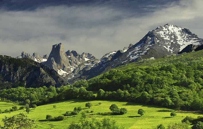 Biosfera Picos de Europa